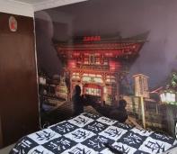 japoneses foto murales, confu, tecondor