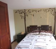 ramas, hojas, aves, vinilo, adhesivo decorativo